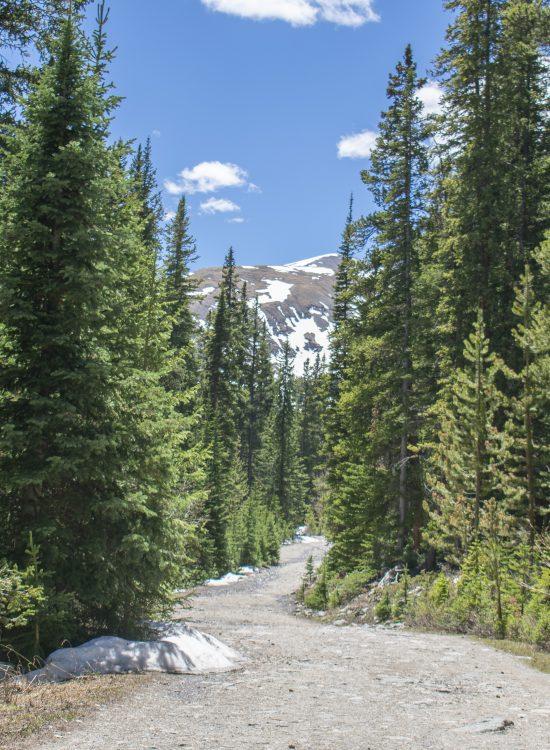 Colorado is Breathtaking Olivia Quinlan Blog
