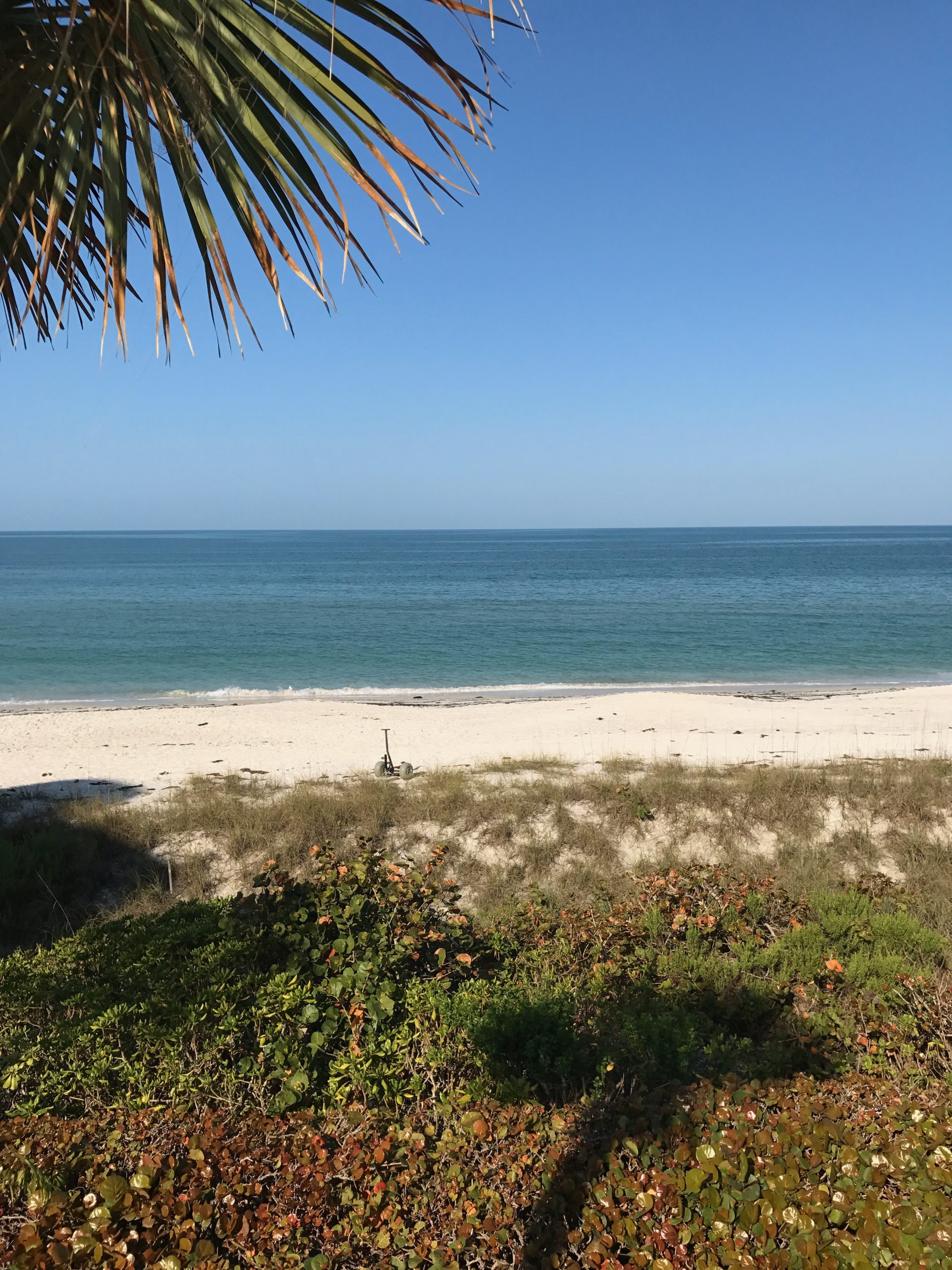 Girl's Trip to Naples, Florida